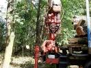 05.10.2011 - porządkowanie po wycięciu drzew