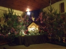25.12.2012 - Stajenka